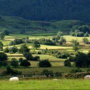 Northern Lake District